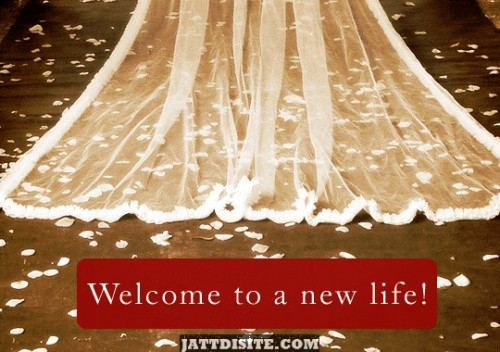 marriage-greeting-cards-congratulations