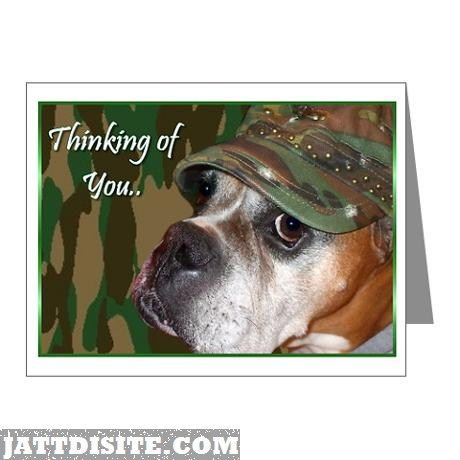 Boxer-thinking-of-you